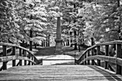 PicturesByDeirdre-7261-Edit-Edit