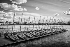 PicturesByDeirdre-7649-Edit