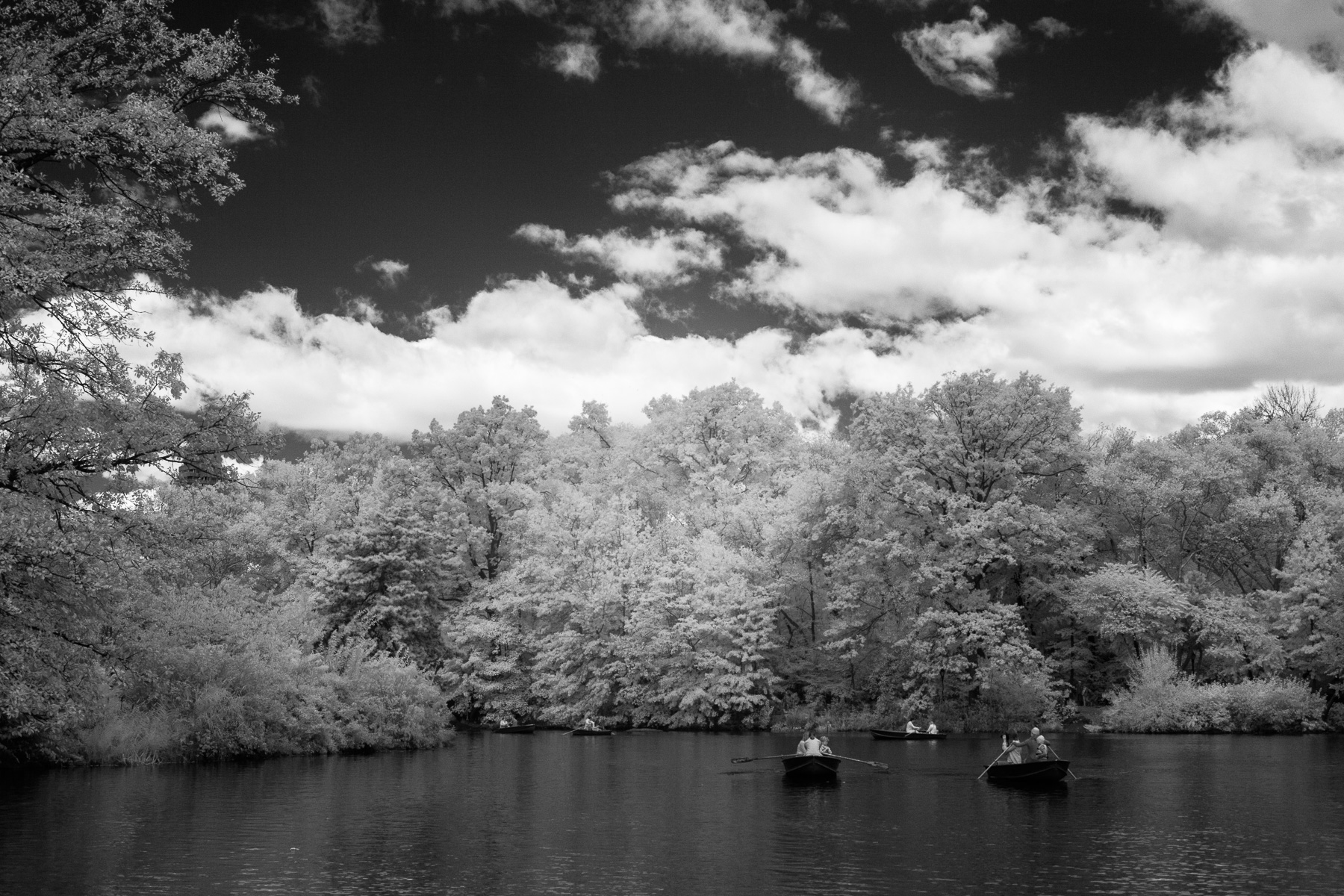 Central Park-0610
